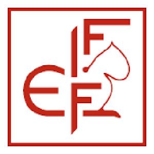 FIFe logo site