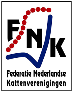 FNK logo site