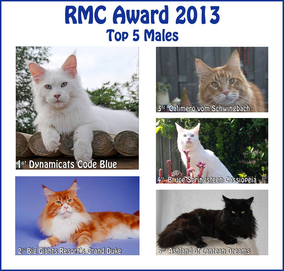 RMC Award 2013 Katers