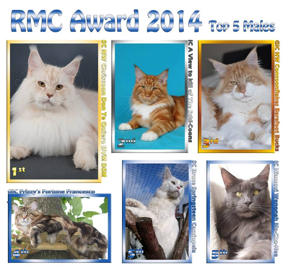 RMC Award 2014 Katers